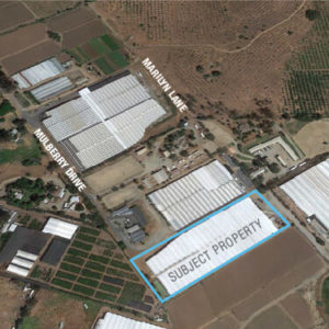Major Price Reduction! Premier Commercial Nursery Property